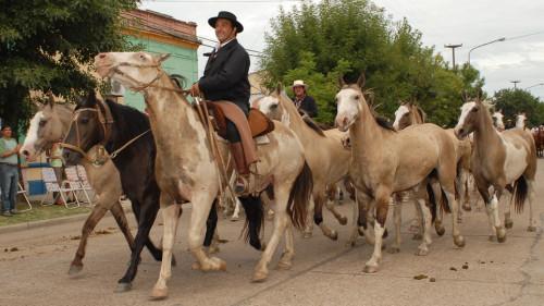 fiesta-del-caballo